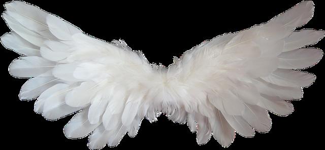 skrzydla aniola bizuteria